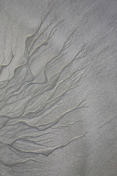 Broome Photograph - Patterns In Sand From Flowing Water by Tobias Titz