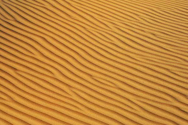 Sand Photograph - Patterns In The Sand In Wahiba Sands by Eric Nathan
