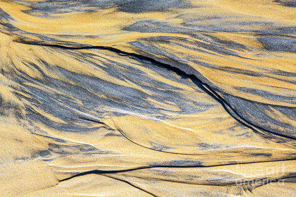 Wall Art - Photograph - Patterns In The Sand by Sheila Smart Fine Art Photography