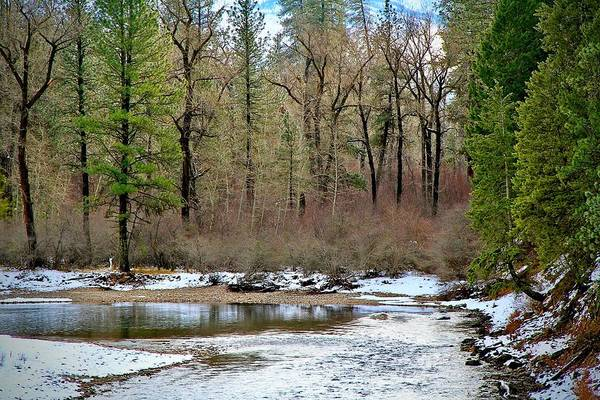 Photograph - Payette River Idaho by Ed  Riche