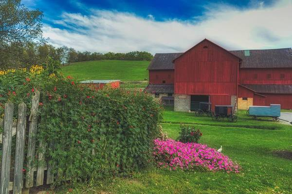 Wall Art - Photograph - Peaceful Amish Farm  by Mountain Dreams