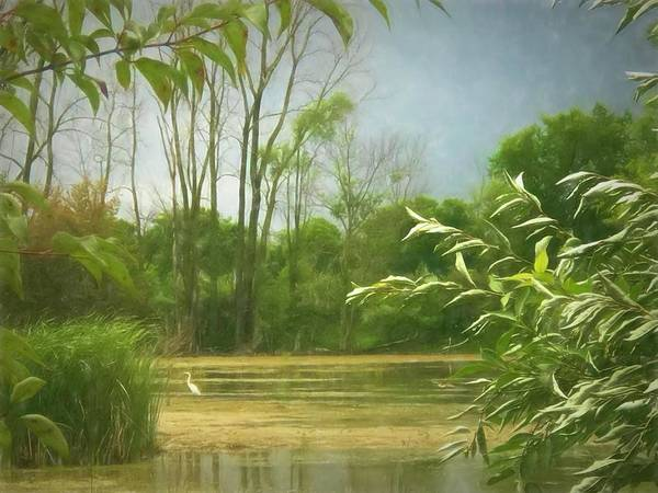 Photograph - Peaceful Fen by Jack Wilson