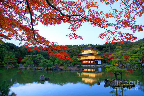 Wall Art - Photograph - Peaceful Golden Pavilion Temple In by Worldclassphoto