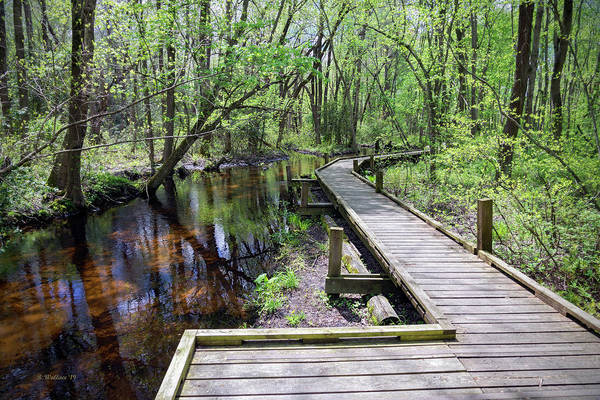 Wall Art - Photograph - Peaceful Mill Stream by Brian Wallace