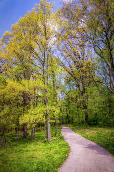 Woodlands Photograph - Peaceful Pathway by Tom Mc Nemar