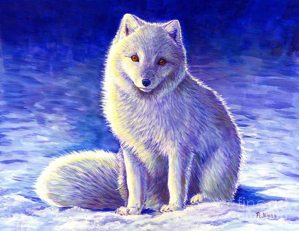 Painting - Peaceful Winter Arctic Fox by Rebecca Wang