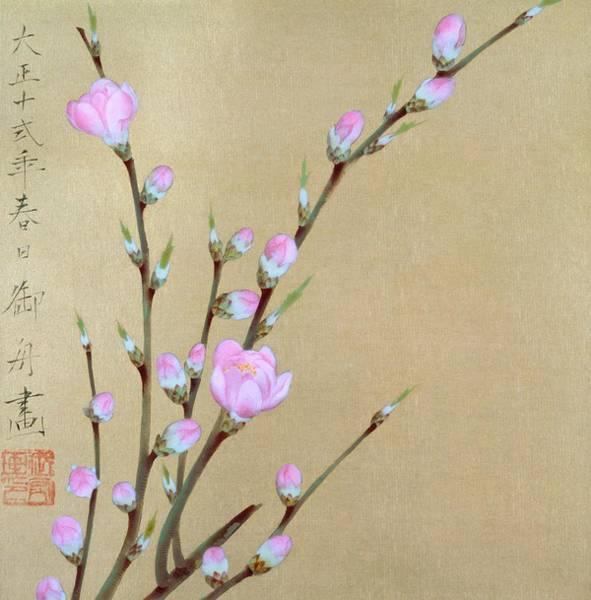 Wall Art - Painting - Peach Blossom - Digital Remastered Edition by Hayami Gyoshu