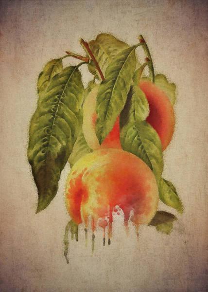 Digital Art - Peach by Jan Keteleer