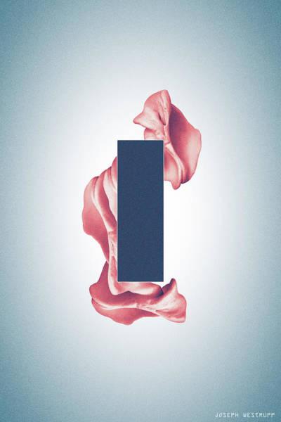 Photograph - Peach Organon - Surreal Abstract Rectangle On Seashell by Joseph Westrupp