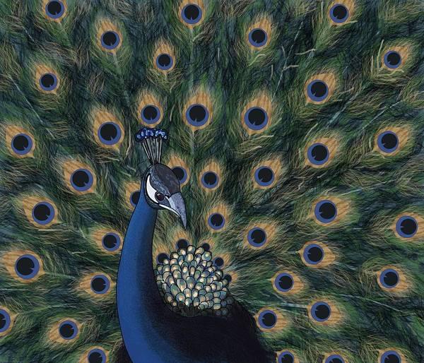 Digital Art - Peacock Digital Change1 by Joan Stratton