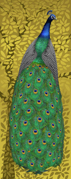 Painting - Peacock In Tree, Golden Ochre, Tall by David Arrigoni