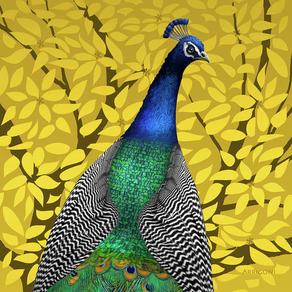 Painting - Peacock In Tree, Naples Yellow, Square by David Arrigoni