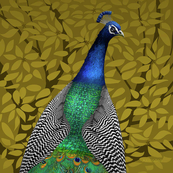 Painting - Peacock In Tree, Raw Umber, Square by David Arrigoni