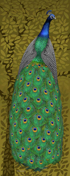 Painting - Peacock In Tree, Raw Umber, Tall by David Arrigoni