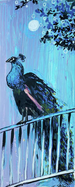 Painting - Peacock On A Fence by Tilly Strauss