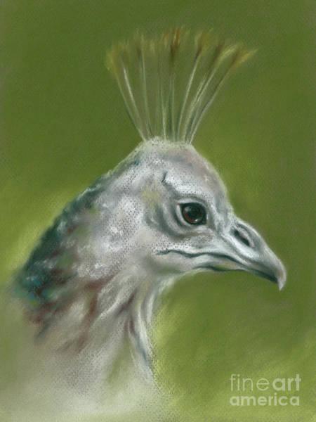 Pastel - Peahen Portrait by MM Anderson