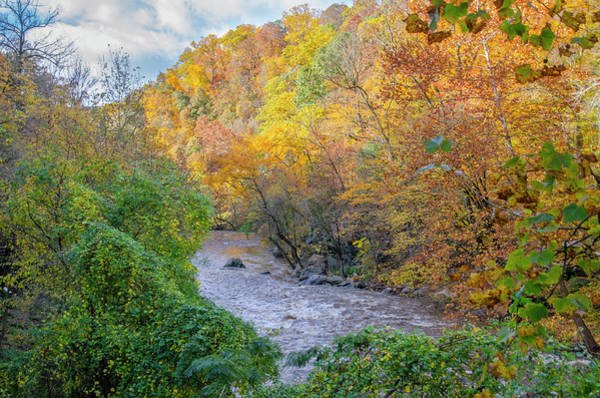 Wall Art - Photograph - Peak Fall  Colors Along The Wissahickon Creek by Bill Cannon