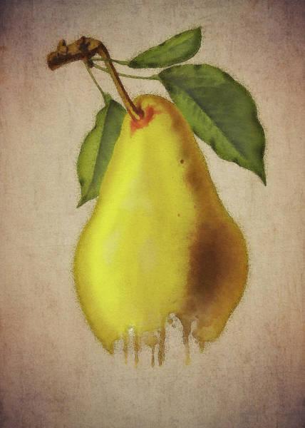 Digital Art - Pear by Jan Keteleer