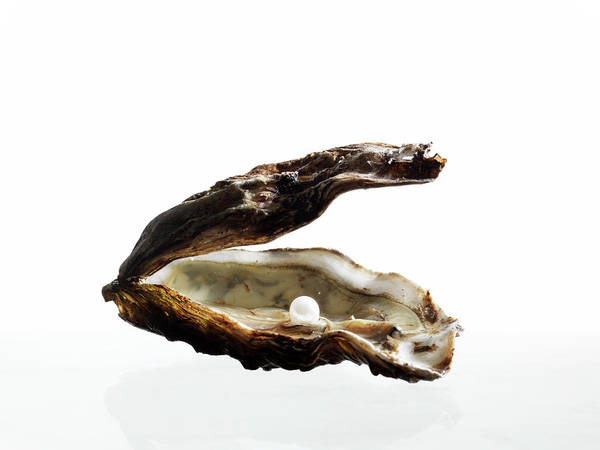 Wall Art - Photograph - Pearl In Oyster Shell by Zing Images