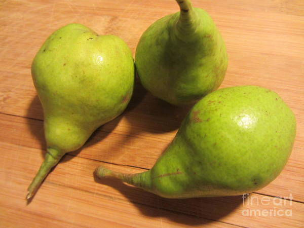 Photograph - Pears From The Old Orchard by Susan Carella
