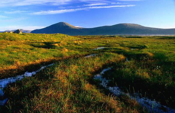 Moor Photograph - Peat Bogs, Rannoch Moor, Scotland by Grant Dixon
