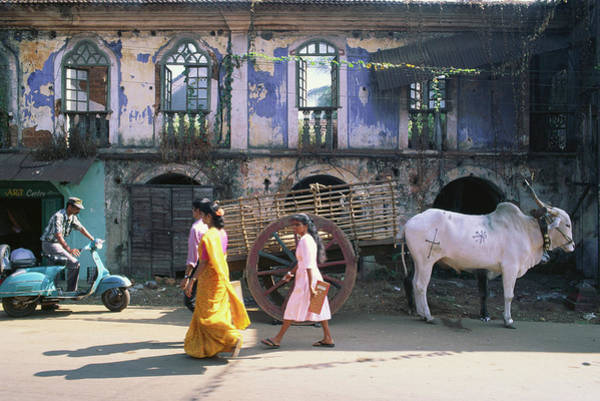 Goa Photograph - Pedestrians And Cow On A Street At by Kay Maeritz / Look-foto