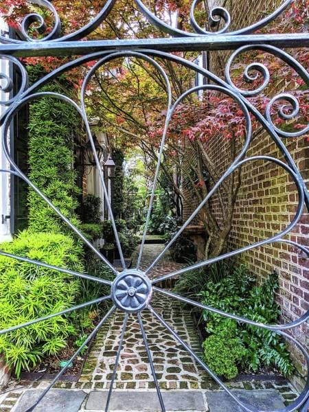 Photograph - Peek-a-boo Garden by Portia Olaughlin