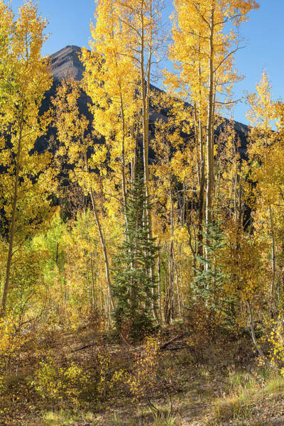 Photograph - Peek-a-boo Mountain by Denise Bush