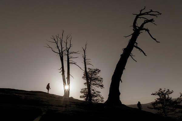 Photograph - Peek-a-boo Sun by Marzena Grabczynska Lorenc