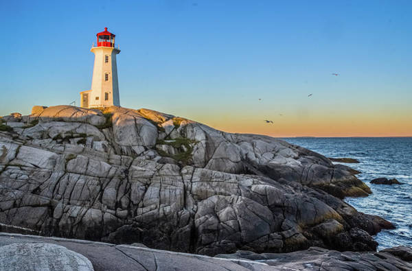Photograph - Peggys Cove Lighthouse by Matthew Irvin