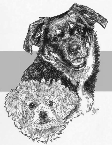 Drawing - Peke-a-pin And Pup by Barbara Keith