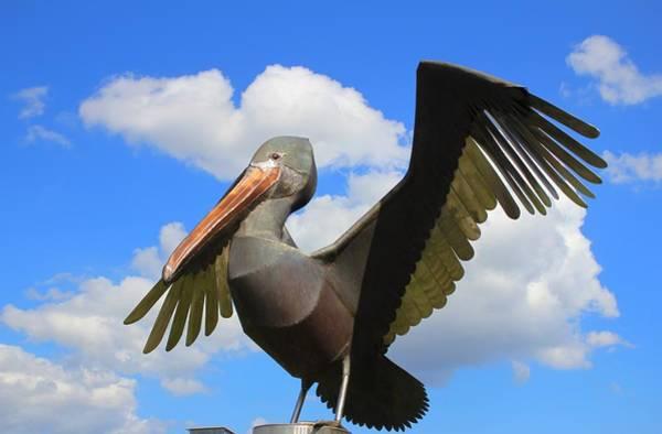 Photograph - Pelican Statue by Cynthia Guinn