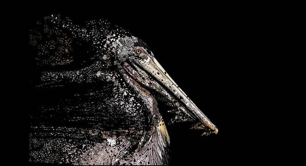 Photograph - Pelican T-shirt by Bill Posner