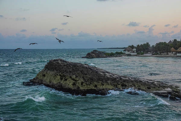 Photograph - Pelicans Flying Over Tulum Beach At Sunset Tulum Mexico Mx by Toby McGuire