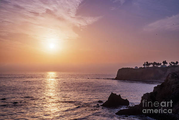 Wall Art - Photograph - Pelicans Over Point Vicente by Sarah Ainsworth