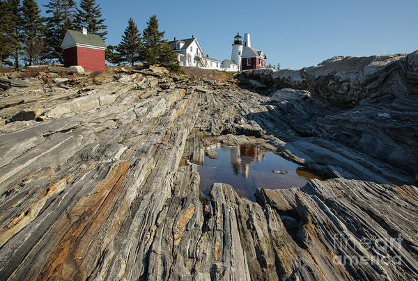 Photograph - Pemaquid Point Light - Bristol, Maine by Erin Paul Donovan