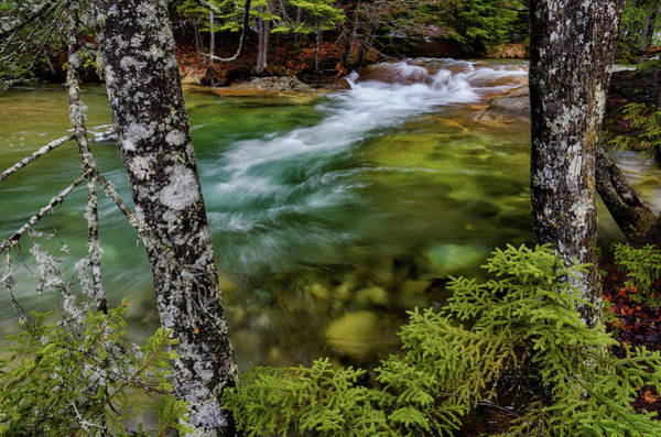 Photograph - Pemigewasset River N H Earth Day by Michael Hubley