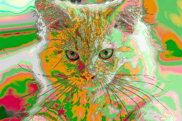 Digital Art - Pen And Ink Kitten Abstract by Don Northup