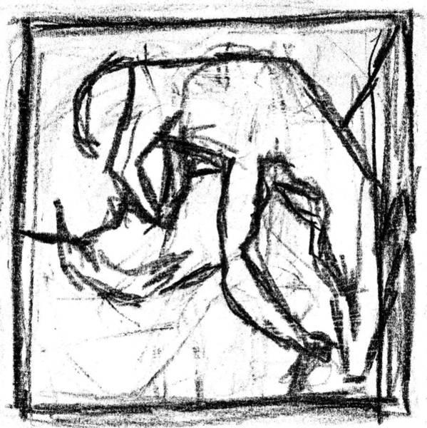 Digital Art - Pencil Squares Black Canine E by Artist Dot