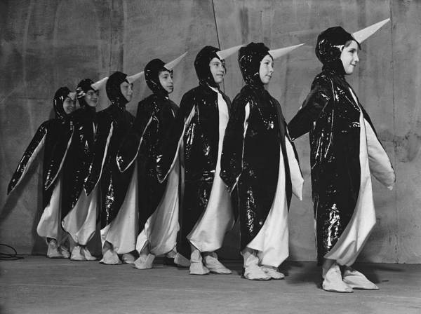 Humor In Art And Photograph - Penguin Chorus by Fred Morley