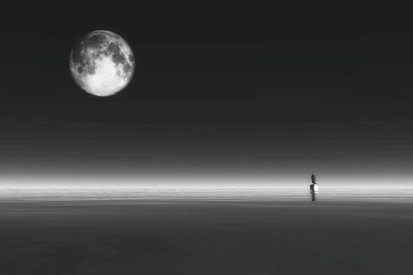 Digital Art - Penguin by Jan Keteleer