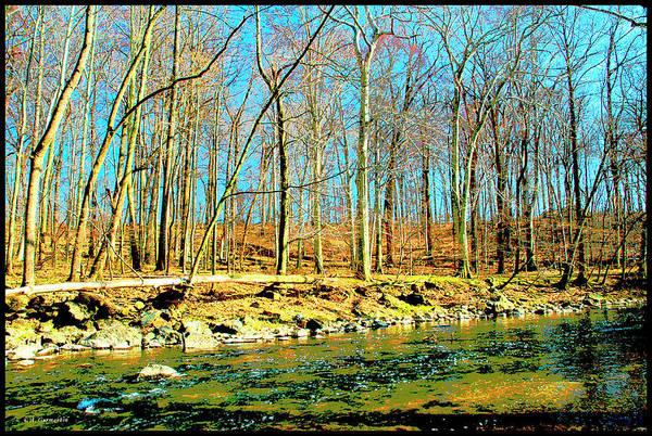 Digital Art - Pennypack Creek, Philadelphia by A Gurmankin