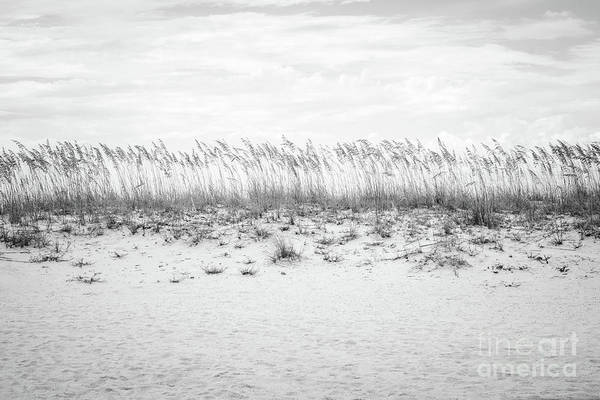 Wall Art - Photograph - Pensacola Beach Beachscape Black And White Photo by Paul Velgos