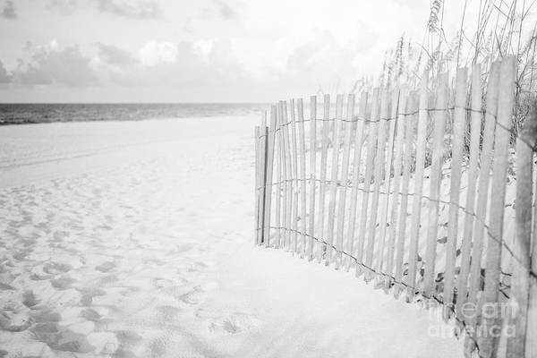 Wall Art - Photograph - Pensacola Florida Beach Fence Black And White Photo by Paul Velgos