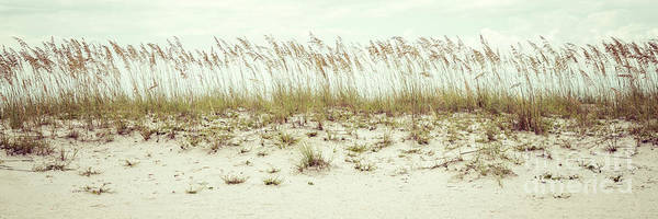 Wall Art - Photograph - Pensacola Florida Beach Grass Beachscape Panorama Photo by Paul Velgos
