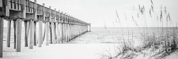 Wall Art - Photograph - Pensacola Pier And Beach Grass Black And White Panoramic Photo by Paul Velgos