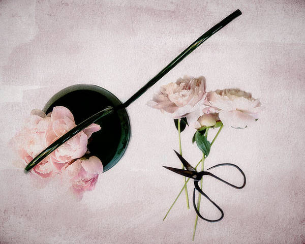Photograph - Peonies And Watering Can by Rebecca Cozart