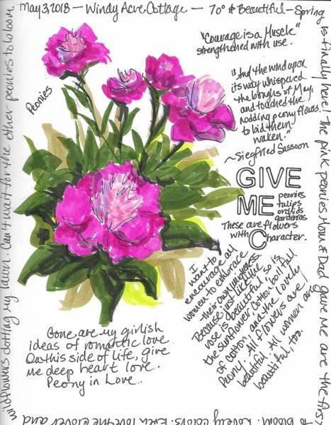 Wall Art - Painting - Peonies At Windy Acre Cottage by Susan Elizabeth Jones