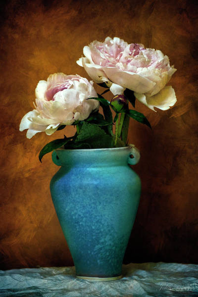 Photograph - Peonies In Spring by John Rivera