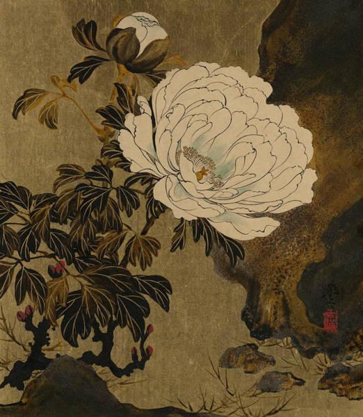 Painting - Peonies by Shibata Zeshin
